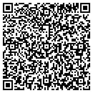QR-код с контактной информацией организации ABC Motors