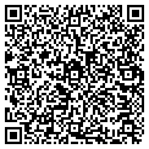 QR-код с контактной информацией организации Веллесгрупп, ООО