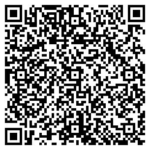 QR-код с контактной информацией организации Galeon (Галеон), ЧП