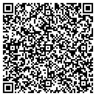 QR-код с контактной информацией организации КОЛОР ТОО