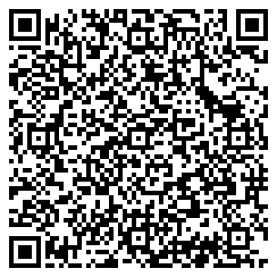 QR-код с контактной информацией организации Lodochka, ЧП