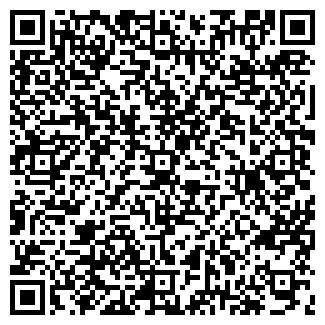 QR-код с контактной информацией организации Темiр Азия Строй, ТОО