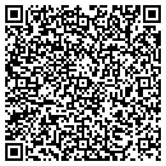 QR-код с контактной информацией организации Гангаева, ИП