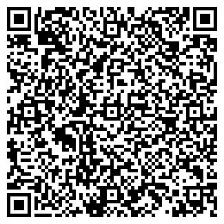 QR-код с контактной информацией организации Субъект предпринимательской деятельности «DSMOTOR»