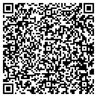 QR-код с контактной информацией организации Доминокс, ЧП