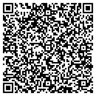QR-код с контактной информацией организации Тильды от Хильды
