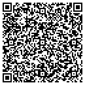 QR-код с контактной информацией организации ИП «Бабаев»