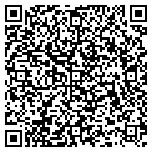 QR-код с контактной информацией организации ИНСИ