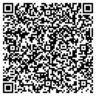 QR-код с контактной информацией организации Ками-МК, ООО
