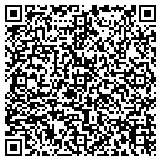 QR-код с контактной информацией организации Лизоформ, ООО