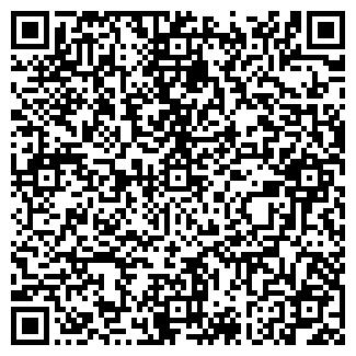 QR-код с контактной информацией организации Pilot, ООО