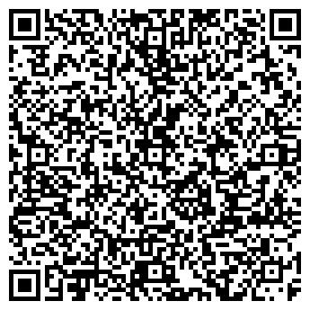 QR-код с контактной информацией организации Элсид, ЧП