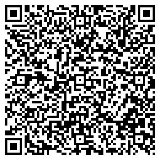 QR-код с контактной информацией организации Альпина, ЧП