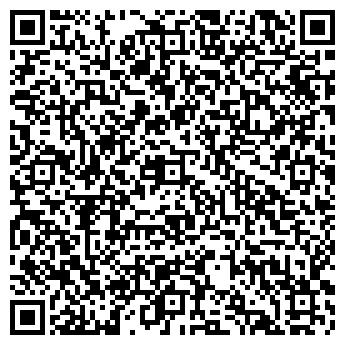 QR-код с контактной информацией организации Писарев, ЧП