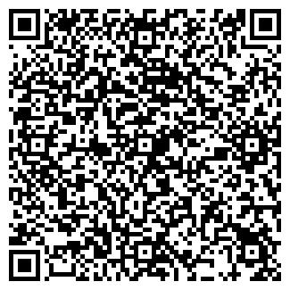 QR-код с контактной информацией организации Тюнинг, ИП
