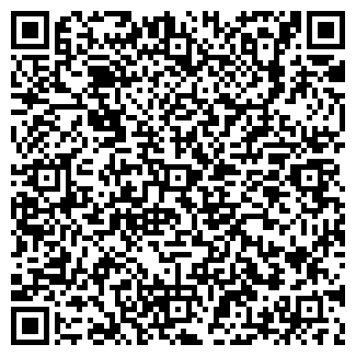 QR-код с контактной информацией организации Порошок, ИП