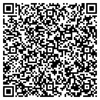 QR-код с контактной информацией организации ИП АЛГИНИЧЕВ