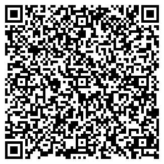 QR-код с контактной информацией организации Система, ООО