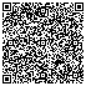QR-код с контактной информацией организации Доместик, ООО