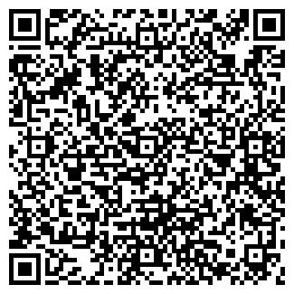 QR-код с контактной информацией организации ВИСП, ООО