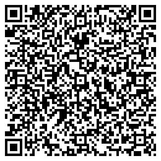 QR-код с контактной информацией организации Кристал Айс, ООО