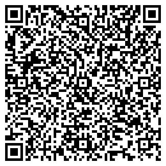 QR-код с контактной информацией организации Айшолпан, ИП