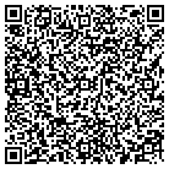QR-код с контактной информацией организации Plesk (Плеск), ИП