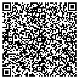QR-код с контактной информацией организации Лена, ИП