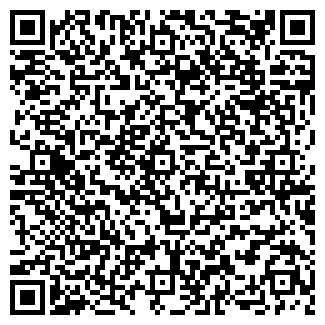 QR-код с контактной информацией организации Рсалдин Е, ЧП