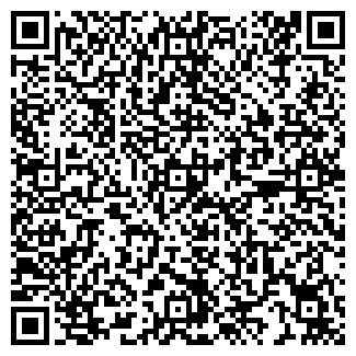 QR-код с контактной информацией организации ШЕВИЛОВ, ИП