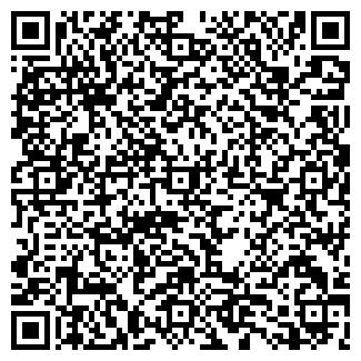QR-код с контактной информацией организации Шуляк, ЧП