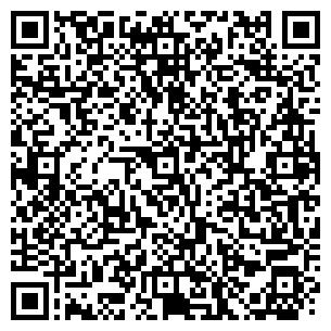 QR-код с контактной информацией организации ТД Киссон, ЧП