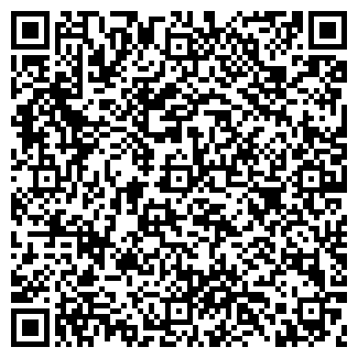 QR-код с контактной информацией организации Алес, ООО