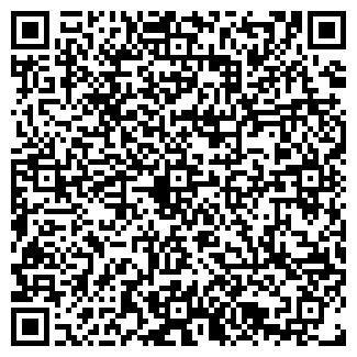 QR-код с контактной информацией организации Порошок+, ЧП