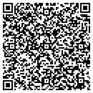 QR-код с контактной информацией организации Ищенко, ЧП