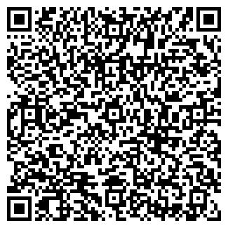 QR-код с контактной информацией организации Техойл, ООО