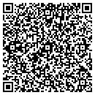 QR-код с контактной информацией организации РУДО-ЭЛ ООО