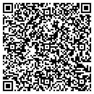 QR-код с контактной информацией организации Кошик, ИП