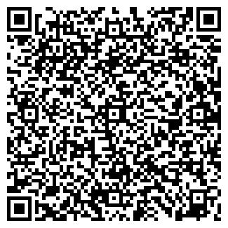 QR-код с контактной информацией организации Викис, ООО