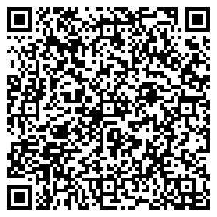 QR-код с контактной информацией организации Арабеска Био, ООО