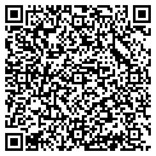 QR-код с контактной информацией организации Видикаст, ЧП