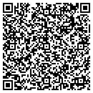 QR-код с контактной информацией организации Solar-Wind System, ЧП