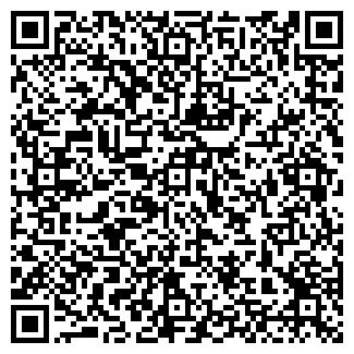 QR-код с контактной информацией организации ЛеймишГруп, ООО