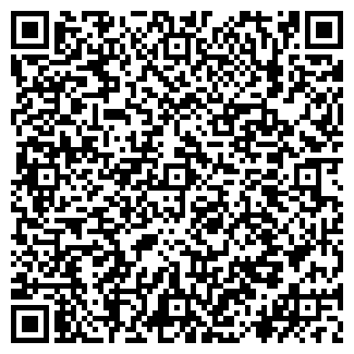 QR-код с контактной информацией организации Дзауров, ИП
