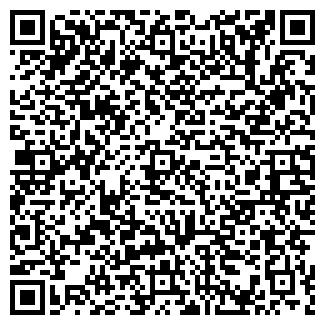 QR-код с контактной информацией организации Ситников, ЧП