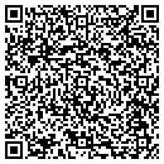 QR-код с контактной информацией организации Пиролиз, ООО