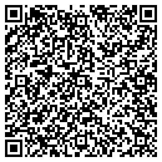 QR-код с контактной информацией организации Алис-експо, ЧП