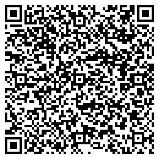 QR-код с контактной информацией организации Ванчугова, ИП