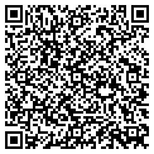 QR-код с контактной информацией организации Альфа, ИП
