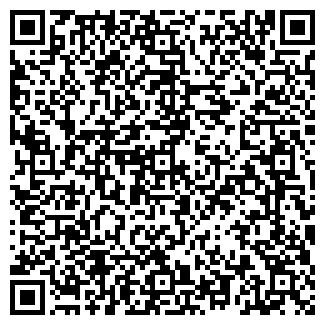 QR-код с контактной информацией организации ЭЛМИ-ИСТОК НПП